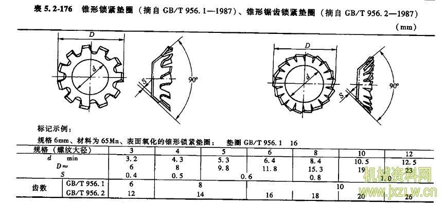 锥形结构组织图